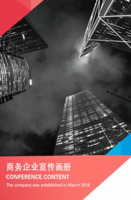 商务企业宣传画册 简约大气 招商加盟 推广宣传