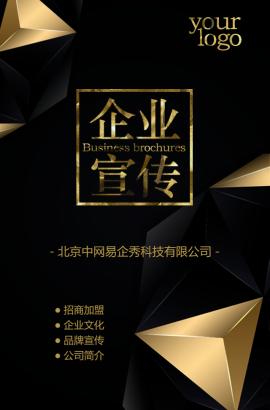 奢华黑金公司简介企业宣传招商加盟品牌宣传通用模板