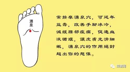 中医基本常识 - 夜风 - 德馨轩