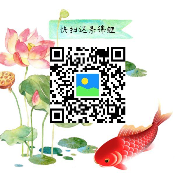 中国风锦鲤创意二维码