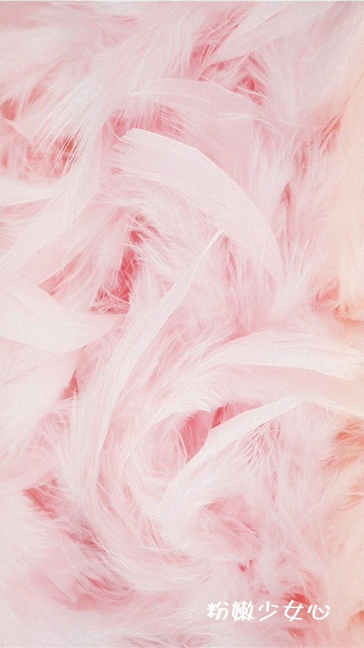 ins风少女粉色羽毛手机壁纸