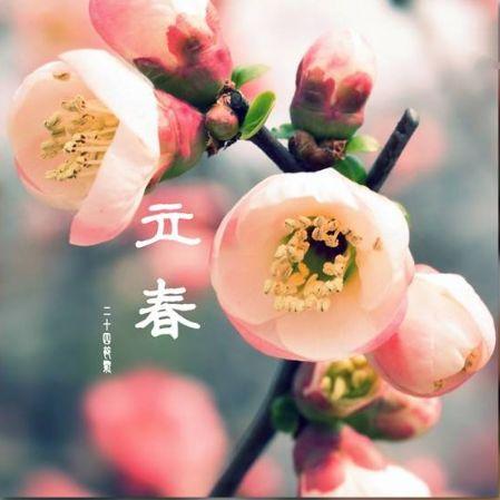微杂志 | ? 立春时节送祝福