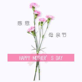 母亲节特供,特惠专享