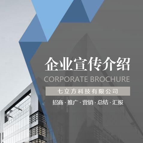 简约大气企业宣传介绍招商推广营销策划总结汇报画册