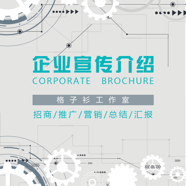企业宣传介绍招商推广营销策划总结汇报