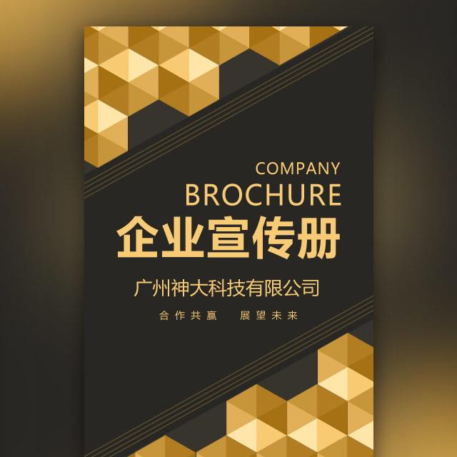 公司简介 企业画册 企业宣传 招商宣传 房地产金融