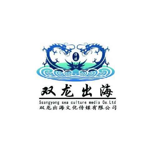 双龙出海文化传媒有限公司