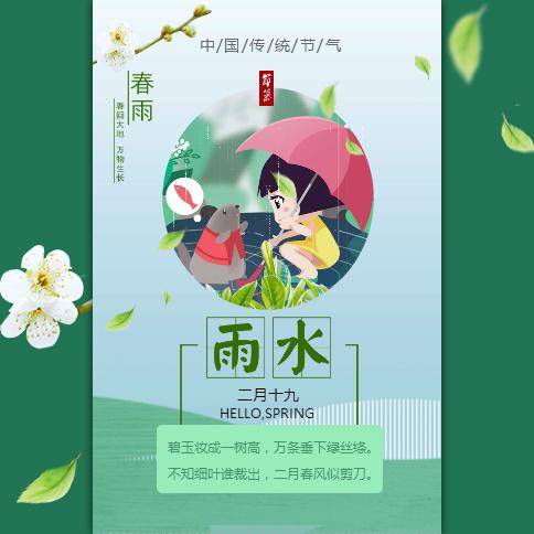 雨水 二十四节气 中国传统节气 清新简约