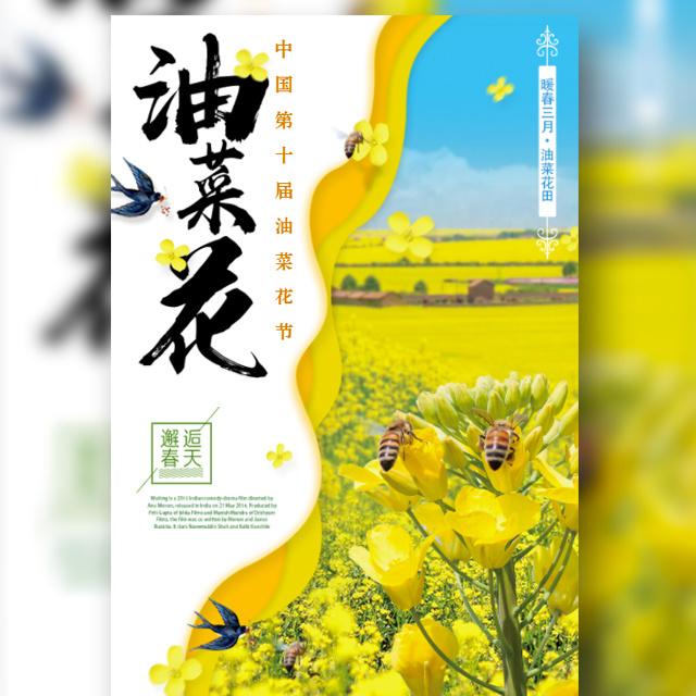 油菜花节 赏花季旅游 踏青旅行活动邀请函 小清新