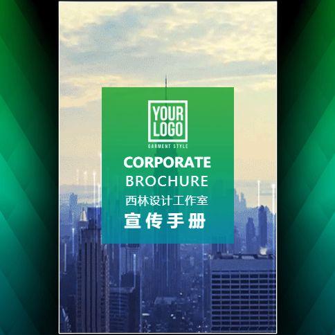 公司简介企业宣传产品介绍品牌推广产品画册产品简约