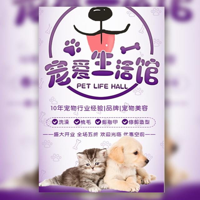 宠物店开业宣传宠物之家动物医院猫狗宠物美容寄养