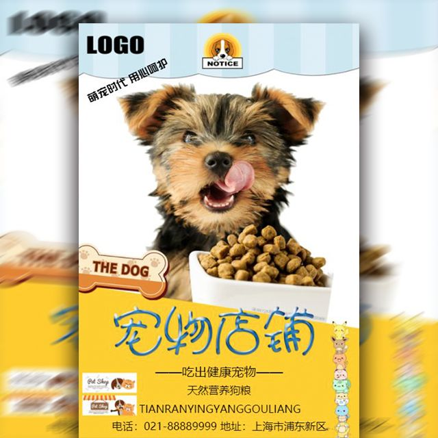 宠物店宣传优惠时尚简约风格