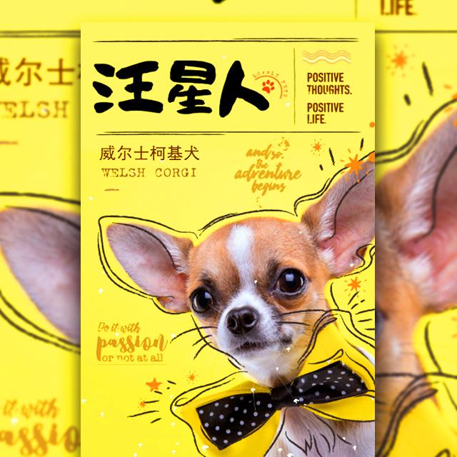 手绘风汪星人宠物促销创意宣传