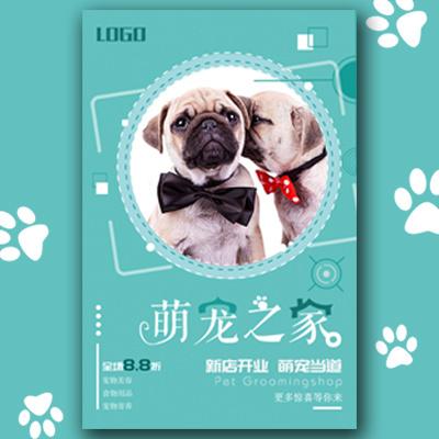 宠物之家宠物店开业活动宠物寄养介绍