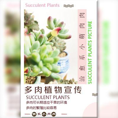 多肉绿植介绍花草种植音乐宣传画册