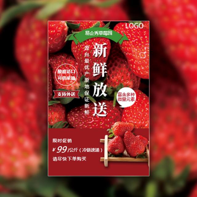 草莓采摘新鲜放送生态园果园采摘水果采摘节亲子采摘