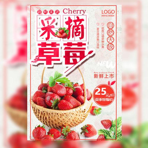 草莓采摘水果采摘节有机农业生态园水果水果采摘邀请