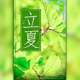 清新绿色立夏节气宣传
