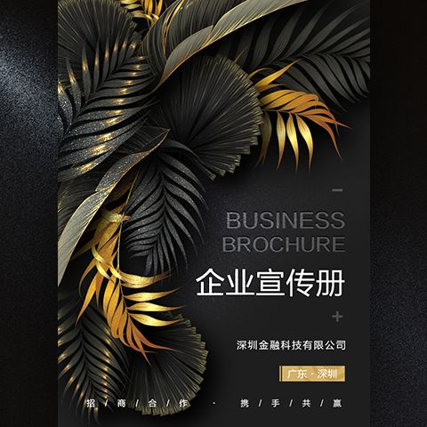 高端时尚黑金企业宣传册