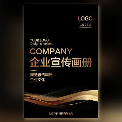 黑金商务企业画册企业宣传公司简介公司文化宣传