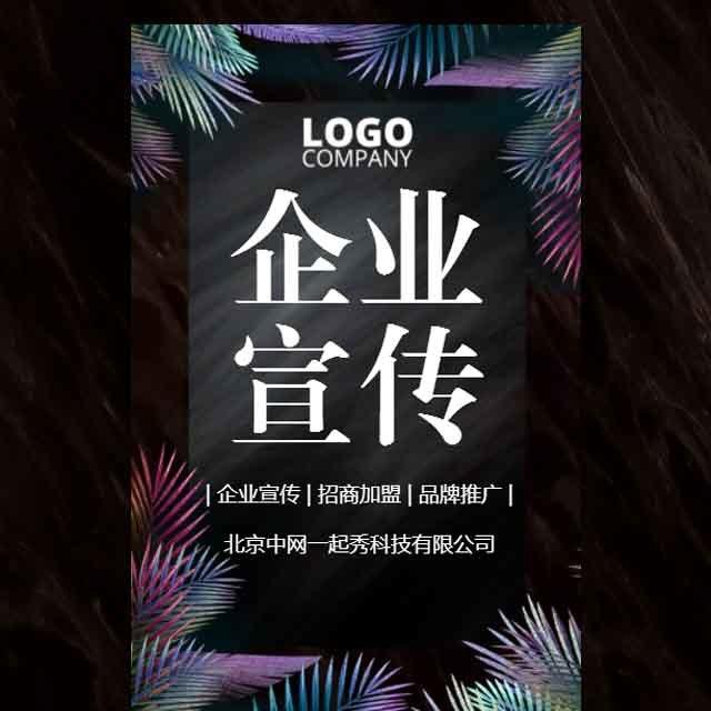 高端时尚公司简介品牌推广宣传企业宣传产品画册