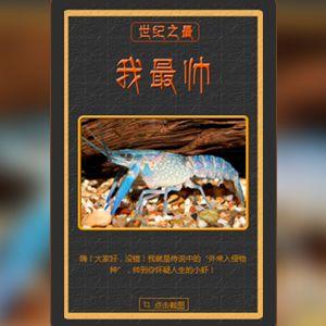 每日一词之世纪之最小龙虾宣传