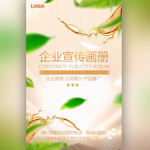 高端时尚商务简约淡金色企业宣传画册公司简介