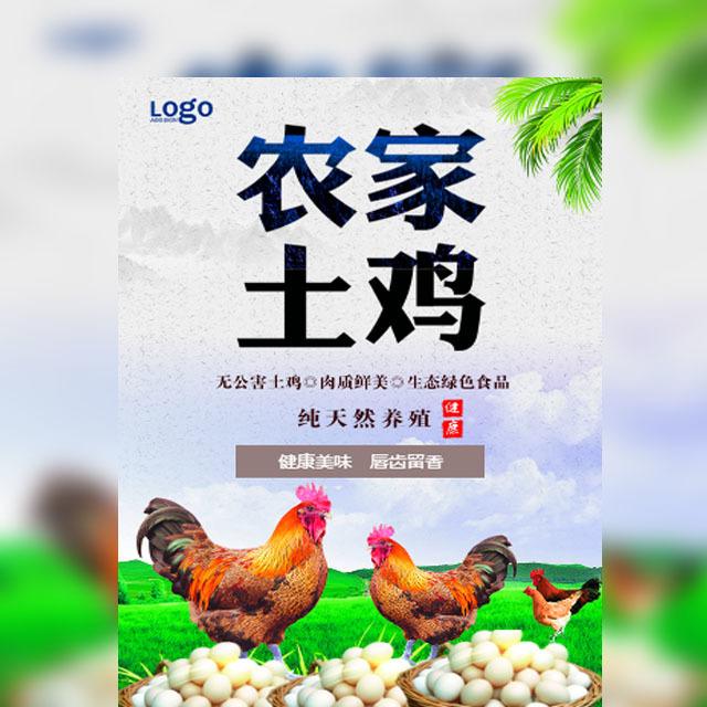 快闪土鸡农家土鸡有机食品土鸡蛋生态食品绿色食品