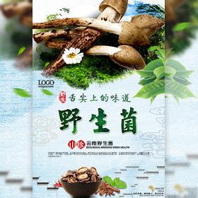 云南野生菌松茸鸡枞红菇牛肝菌新品上市