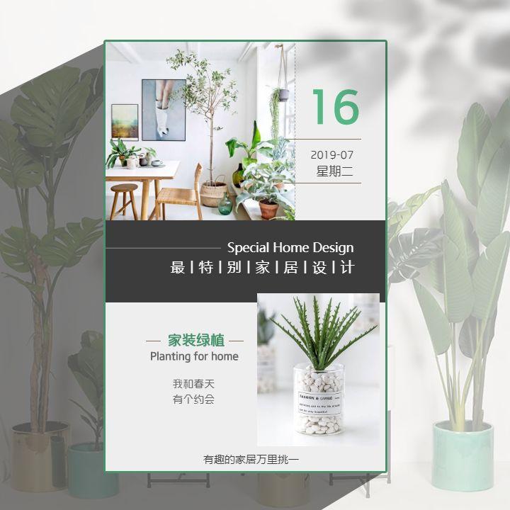 生活家最特别的家居设计家装绿植