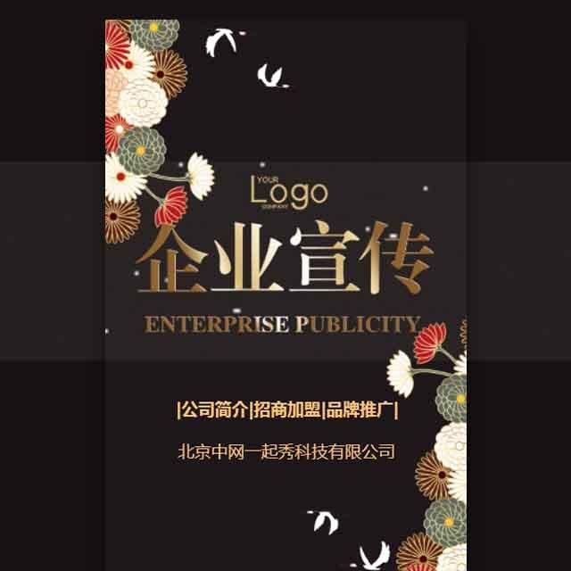 高端大气中国风公司简介品牌推广企业宣传产品画册